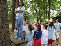 Low Ropes Team Building